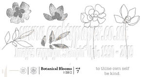Botanical-Blooms