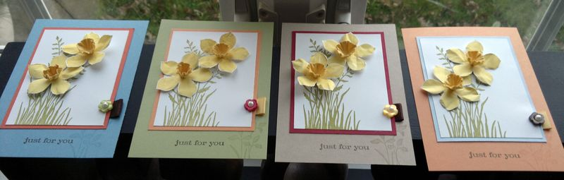 Daffs cards line up